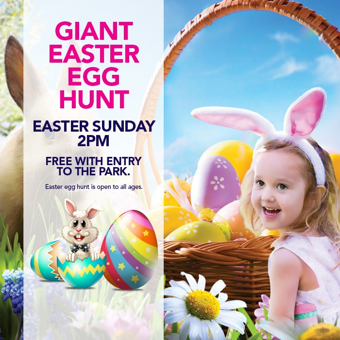 Easter Egg Hunt Banner
